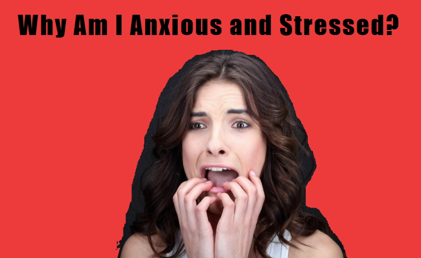 Why Am I Anxious and Stressed?